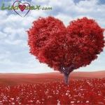 Top 10: Regalos para San Valentin 2020