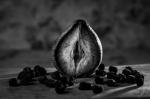 Clítoris: órgano de placer, todavía (desgraciadamente) muy desconocido